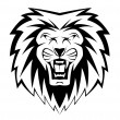 Stock Vector: Lion face