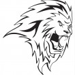 Lion head — Stock Vector