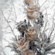 Flowers frozen in ice — Stock Photo
