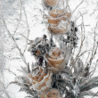 Stock Photo: Flowers frozen in ice