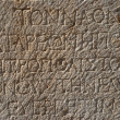 Ancient inscriptions — Stock Photo #31834149