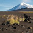 Volcanic landscape on Kamchatka, Russia — Stock Photo