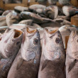 Fresh fishes in a market — Stock Photo
