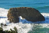 Arch Rock — Stock Photo