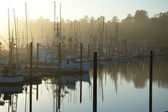 Morning Boats — Foto Stock