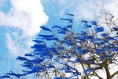 Blue Ribbons — Stock Photo