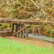 Old Tressel - Stock Photo