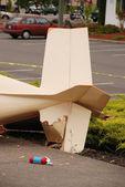 Plane Crash — Stock Photo