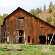 Old Ranch — Stock Photo #23122758