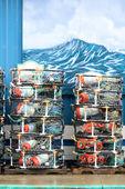 Krab garnki — Zdjęcie stockowe