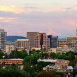 Portland Vista — Stock Photo #30566635