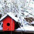 Snow Birdhouse — Foto Stock