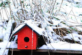 Snow Birdhouse — Stock Photo