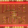 Loose Slot — Stock Photo