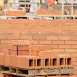 Red Brick — Stock Photo #36901911