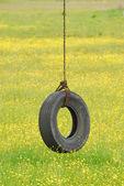 Tire Swing in Yellow — Stock Photo