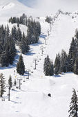 Mt soltero — Foto de Stock