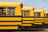 School Bus — Foto de Stock