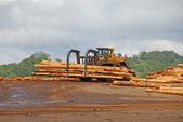 Cargador de troncos — Foto de Stock