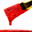 Red Paint Brush — Stock Photo #43125213