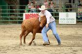 Steer Wrestling — Photo