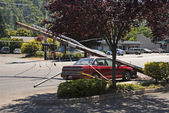 Car and Power Pole — Stock Photo
