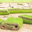 Stock Photo: Rolls of green grass, laying in progress.