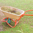 Stock Photo: Horse manure in trolley.