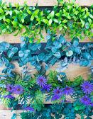 Plaastic 花と植物垂直庭園として木製のポットで. — ストック写真