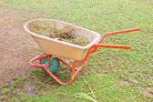 Horse manure in trolley. — Stock Photo