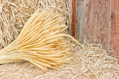 Sheaf of wheat on hay. — Stock Photo