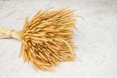 Sheaf of wheat on ground. — Stock Photo