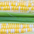 Stock Photo: Close up of sweetcorn.