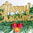 Close up of green wreath with Merry Christmas plate. — Stock Photo