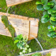Waterfall with wooden box, gardening design. — Stock Photo