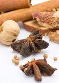 Star anise, cinnamon, peppercorns, cinnamon sticks and another s — Stock Photo