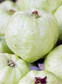 Guava ovoce. — Stock fotografie