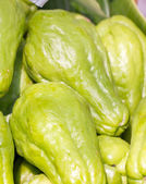Group of chayote fruit. — Stock Photo