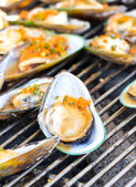 Green Mussel on the grill. — Stock Photo