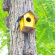 Colorful birdhouse made of wood up in a tree. — Stock Photo
