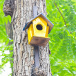 Colorful birdhouse made of wood up in a tree. — Stok fotoğraf