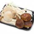 Mushrooms in container — Stock Photo