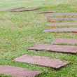 Flagstone walkway — Stock Photo