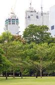 Edificio en construcción y árboles — Foto de Stock