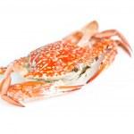 ������, ������: Crab orange