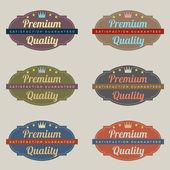 Retro vintage etiket kümesi — Stok Vektör
