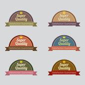 Set of Vintage Retro Labels — Vector de stock