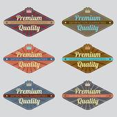 Set of Vintage Retro Badge — Stock Vector