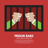 Prison Bars Graphic Vector Illustration — Stock Vector