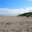 North Sea beach — Stock Photo
